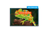 B-KEUZE - IIYAMA Prolite XB3070WQS - XB3070WQS-B1 - PL3070WQ -30 inch - 2560x1600 - 16:10 - DisplayPort - DVI - HDMI - VGA - AH-IPS - Zwart_